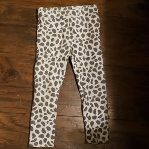 Janie and Jack thick leopard leggings pants 4